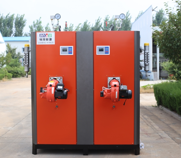 600kg燃气蒸汽发生器